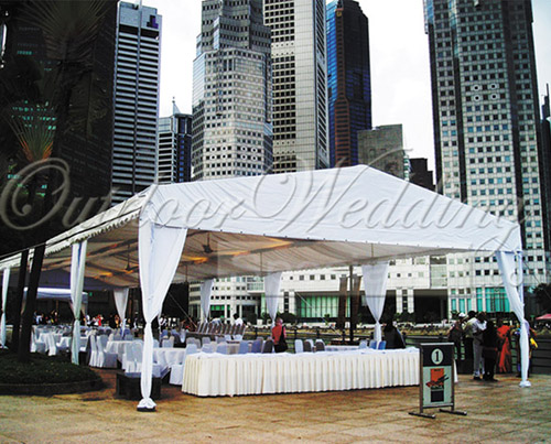 The lunch reception with the CBD as the backdrop